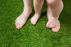 Mother and baby legs standing  on green grass Stock Images