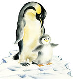 Mother and baby penguins. Mother and baby antarctic penguins staying on block of ice Royalty Free Stock Photo