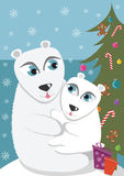 Mother and baby polar bear Stock Image