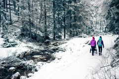 Mother with baby stroller enjoying motherhood in winter forest stock photography