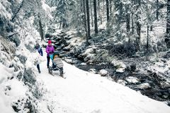 Mother with baby stroller in winter forest, tow women family time royalty free stock image