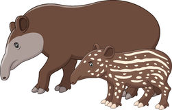 Mother and baby tapir. Illustration of Mother and baby tapir Stock Photo