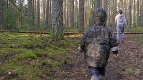 Mother and baby walking in pine forest, having fun and climbing through a fallen tree. stock footage