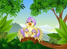 Mother bird with her two babies in the nest royalty free illustration