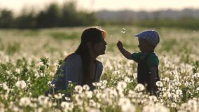 Mother blow dandelion flower from baby hand in flourish field at sunset. Full HD stock video