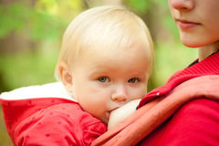 Mother Breast Feeding Baby In Park Stock Image