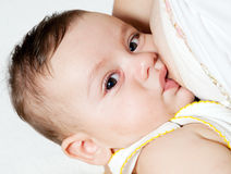 Mother breast feeding her infant Royalty Free Stock Image