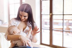 Mother breastfeeding her baby Royalty Free Stock Image