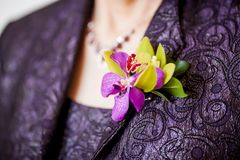 Womans Boutonniere. Mother of the Bride or mother of the groom Boutonniere consisting of green cymbidium orchid, purple denrobium orchid, and green ruscus leaves stock image