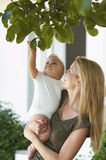Mother Carrying Child Under Tree Royalty Free Stock Photos