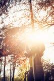 Sunny autumn day. royalty free stock photography