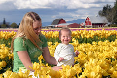 Mother and Child. Celebrating spring in a field of yellow tulips Royalty Free Stock Photo