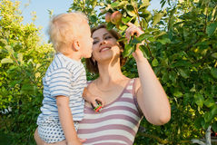 Mother with the child. Mother with the child in a garden at an apple-tree Royalty Free Stock Photography