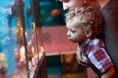 Mother and child at aquarium Stock Photography