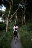 Mother And Child On Bike. Bike ride in the woods with the child back of the bike Stock Photos