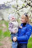 Mother with child in blossom garden Royalty Free Stock Images