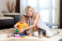 Mother, child boy and pet dog playing. Toy together indoor Royalty Free Stock Photo