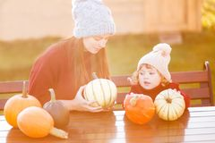 Mother and child choosing pumpkins for jack-o-lantern. Stock Photo