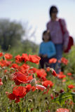 Mother and child in the corn poppy Stock Image