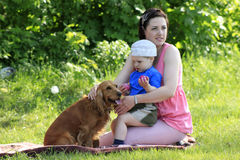 Mother, child and dog on picnic Stock Image