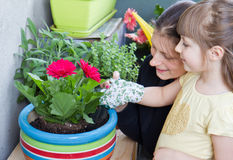 Mother and child gardening flower plant Royalty Free Stock Images