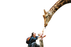 Mother child and giraffe Stock Images