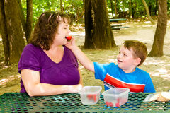 Mother and child having picnic at park Royalty Free Stock Images