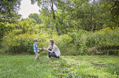 Mother and child picking flowers Royalty Free Stock Image