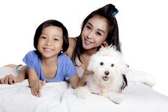 Mother and child play with dog on studio. Image of pretty mother and her daughter playing with their Maltese dog on the bed,  on white background Stock Photography
