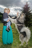 Mother and child playing with dog on nature. Royalty Free Stock Photo