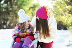 Mother and child in the sled having fun, sunny winter Stock Images