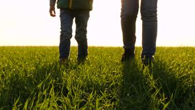 Mother and child walk across a green meadow at sunset. Legs close up.