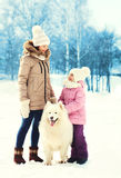 Mother and child walking with white Samoyed dog in winter. Day Stock Photos