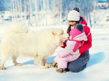 Mother and child with white Samoyed dog together on snow in winter Stock Photo