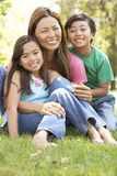 Mother And Children Enjoying Day In Park stock photography