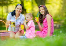 Mother with children enjoying at the picnic Royalty Free Stock Images