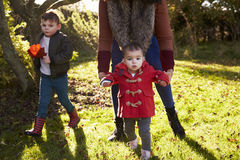 Mother And Children Playing With Autumn Leaves in Garden Stock Image