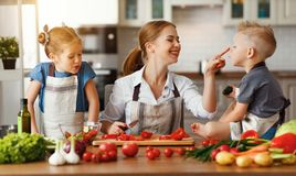 Mother with children preparing vegetable salad. At home stock photo