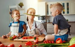 Mother with children preparing vegetable salad. At home royalty free stock images