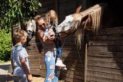 mother and children standing near stable with horses stock images
