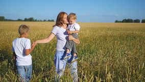 Mother with children walking in field of wheat stock footage