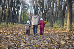 Mother And Children Walking In Park Stock Image
