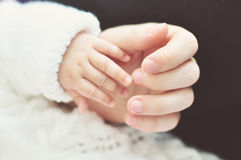 Mother and childs hands. Mother holding her babys hand Stock Photos