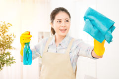 Mother cleaning living room window Stock Image