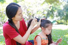 Mother combing daughter`s hair lying in the green garden stock image