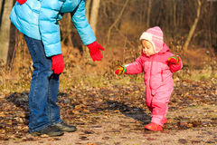 Mother and cute little daughter walk in autumn. Mother and cute little daughter learning walk in autumn leaves Royalty Free Stock Photos