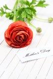 Mother& x27; día de s Fotografía de archivo libre de regalías