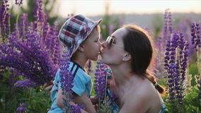 Mother kisses a cute little boy, a son in a blue t-shirt and patterned hat in a field, against a background of narrow. Mother in dark sunglasses kisses a cute stock video footage