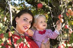 Mother with daughter in an apple orchard Stock Images
