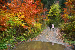 Mother and daughter in autumn forest Royalty Free Stock Photography
